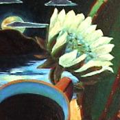Cactus Flower Detail