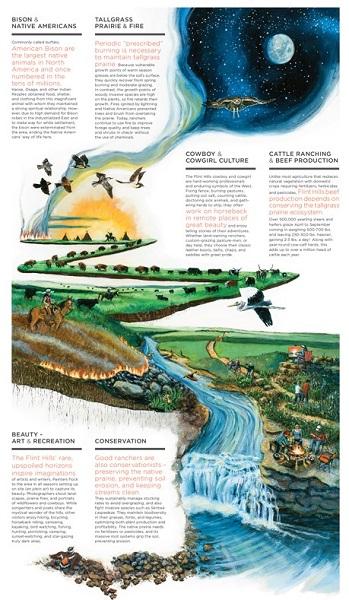 High School Flint Hills Illustration