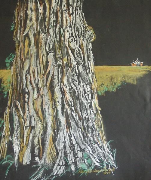 Cottonwood tree at Homestead